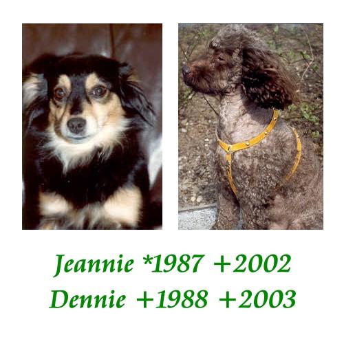 Jeannie & Dennie / Spohner-Family